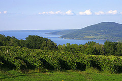 Sceneic View Canandaigua Lake in the Finger Lakes Wine Region