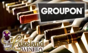 $109 for a Winemaking Party and 30 Bottles of Wine at Lakeland Winery