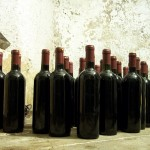Featured Wine of the Month: Fresh Chianti