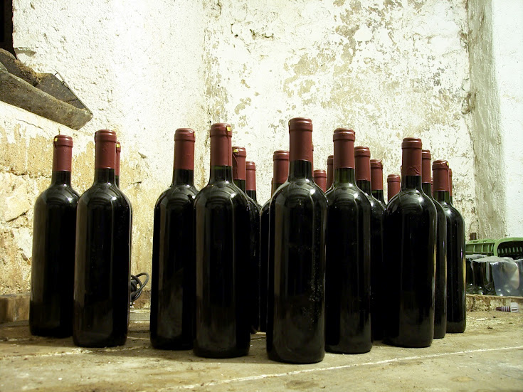 Compound in Red Wine Could Fight Alzheimer's